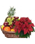Fruktkurv 5kg med Julestjerne, Firmagaver med logo, julegaver til personalet, julegaver til ansatte, julegavertips til ansatte, firmagaver til jul, julegaver fruktkurv, julegaver sjokolade,